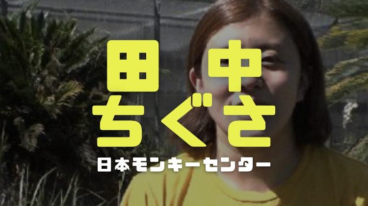 田中ちぐさ(猿の飼育主任)の経歴学歴|勤務先日本モンキーセンターの場所とサルの種類一覧