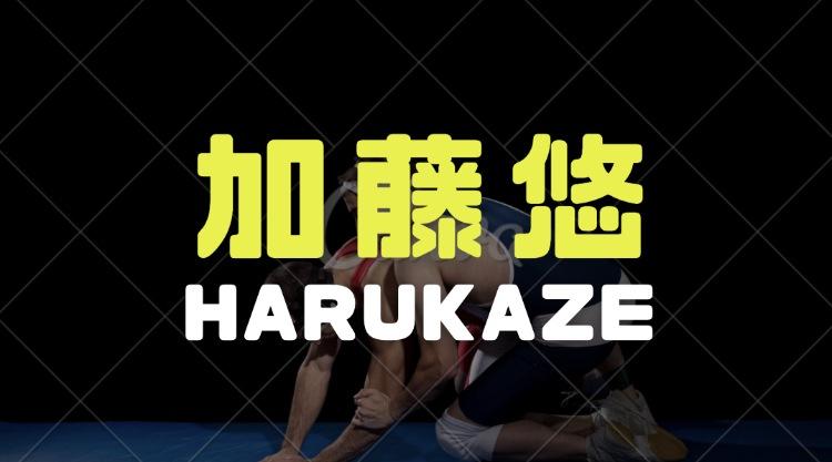 加藤悠(HARUKAZE)の経歴|プロレスの得意技やお笑いネタ動画を調査