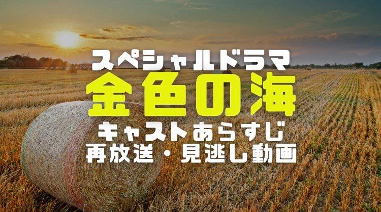 金色の海(NHKドラマ)のキャストやあらすじと放送日時から再放送と見逃し動画視聴方法まで