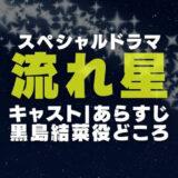 スペシャルドラマ「流れ星」の画像